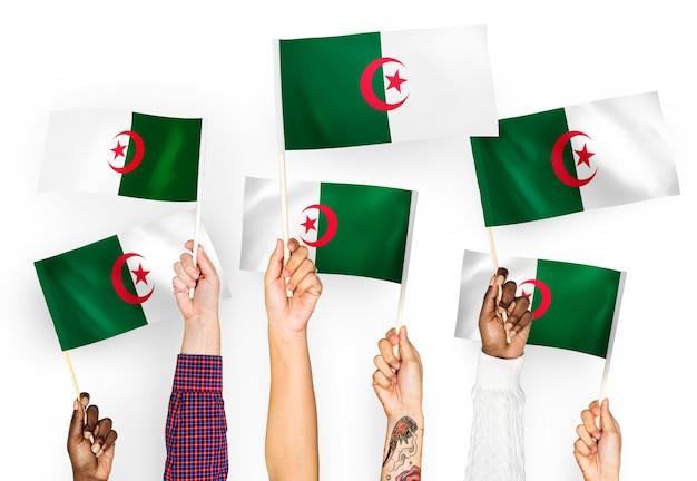 Mains agitant des drapeaux de l'algérie
