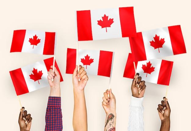 Mains agitant des drapeaux du canada
