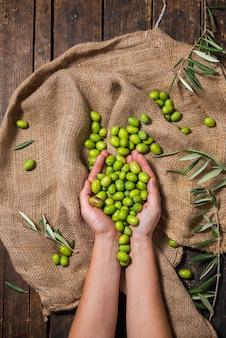 Mains d'un agriculteur tenant des olives vertes biologiques pour préparer de l'huile d'olive sur un sac en tissu marron