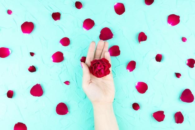 Mains de beauté avec des fleurs de maquillage