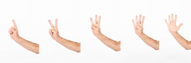 Les mains de culture comptant jusqu'à cinq