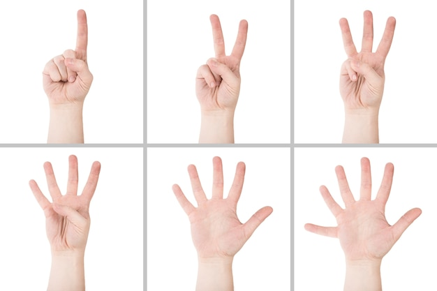 Les mains de culture comptant jusqu'à six
