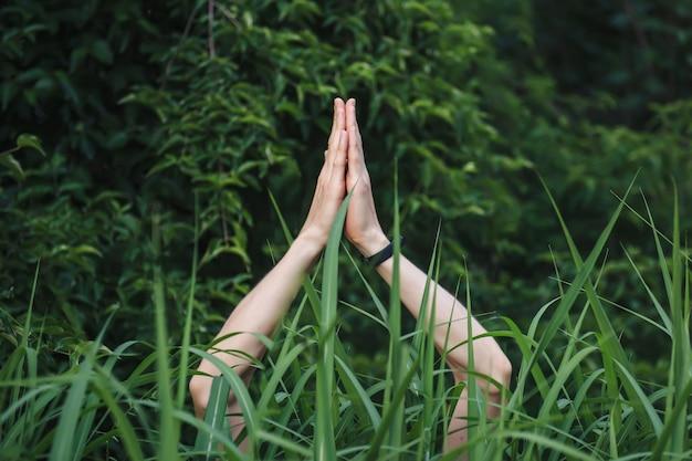 Les mains dans le geste de namaste dans le mode de vie sain de l'herbe verte élevée