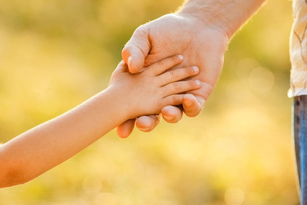 Mains du parent et de l'enfant à l'extérieur dans le parc