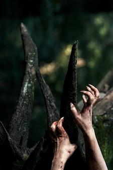 Mains effrayantes de zombie dans la nature