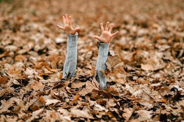 Mains de l'enfant dans les feuilles