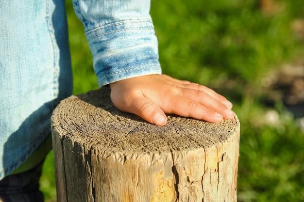 Les mains des enfants tiennent une souche dans le parc dans la nature