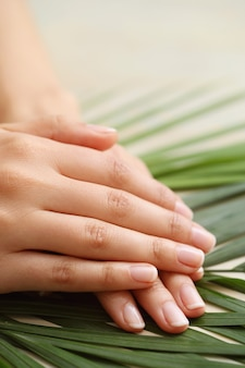 Mains féminines. concept de soins de la peau et de manucure