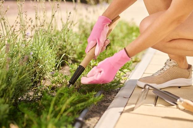 Mains féminines dans des gants de protection enlevant les mauvaises herbes