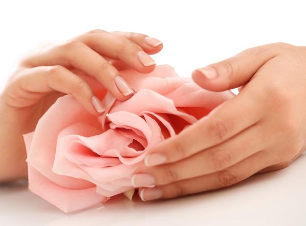Mains féminines avec rose rose. concept de féminité