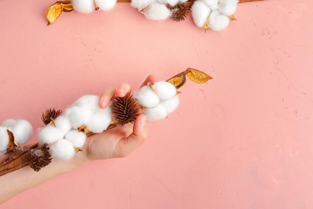 Des mains féminines tiennent une délicate fleur de coton