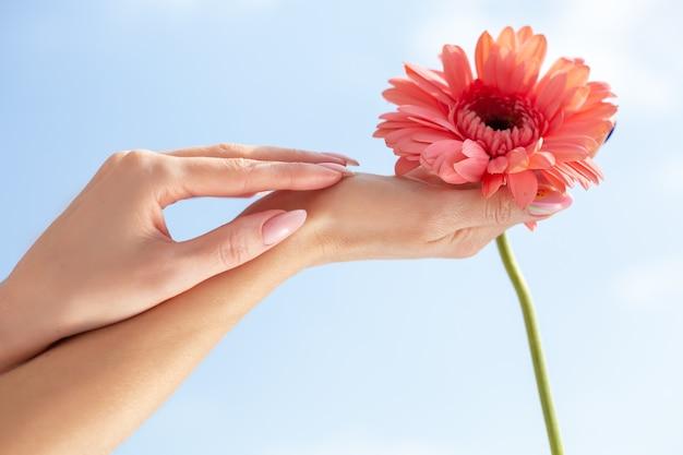 Les mains féminines tiennent une fleur. symbole de la beauté et de la santé féminines