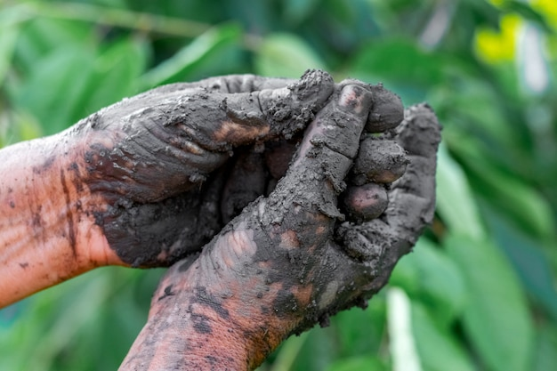 Les mains de la femme dans la boue thérapeutique
