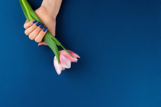 Mains de femme avec manucure tenant des tulipes colorées