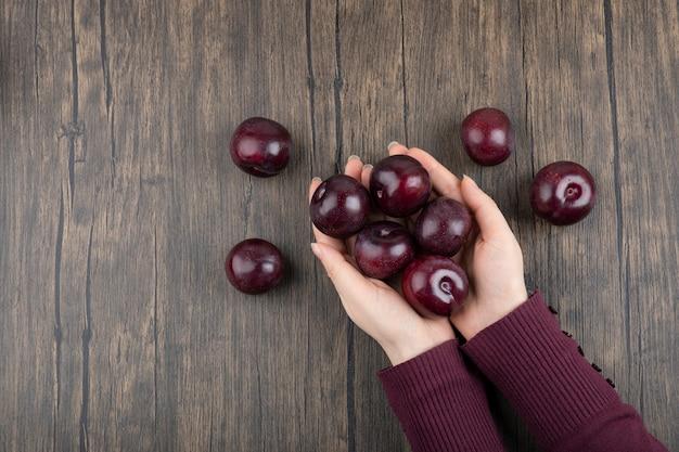 Mains de femme tenant des prunes violettes saines sur une table en bois.