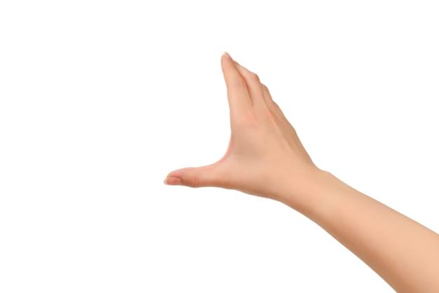 Mains de femme voulant ou demandant quelque chose, copiez l'espace.