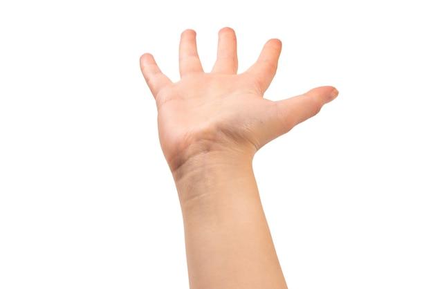 Mains de femme voulant ou demandant quelque chose