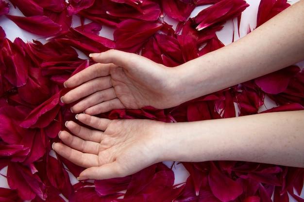 Les mains d'une fille à la peau claire avec des taches de rousseur se trouvent sur les pétales de pivoines rouges avec des palmiers
