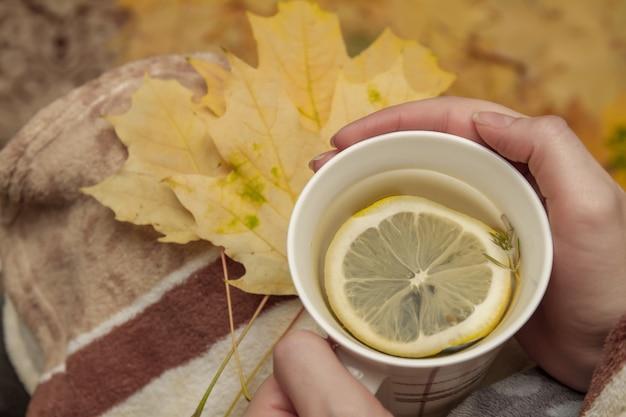 Mains de fille avec une tasse de tisane chaude au citron contre des feuilles d'automne jaunes