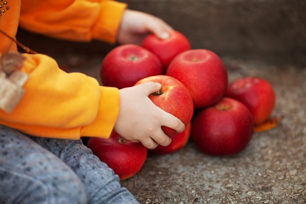 Mains de fille tenant des pommes rouges pendant la récolte d'automne.