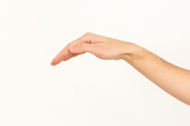 Mains sur fond blanc