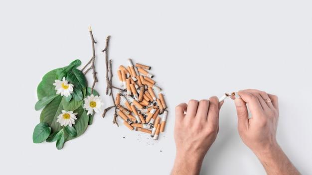 Les mains des hommes cassent une cigarette.