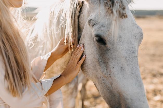Mains humaines caresser un cheval, gros plan