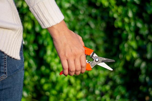 Mains de jardinière d'âge moyen. - femme travaillant avec sécateur dans le jardin domestique.
