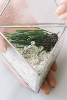 Mains de mariée tenant des anneaux de mariage dans la boîte en verre triangle avec du sable blanc décoré avec le pin
