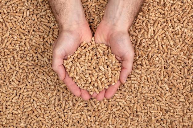 Mains montrant des granulés de bois