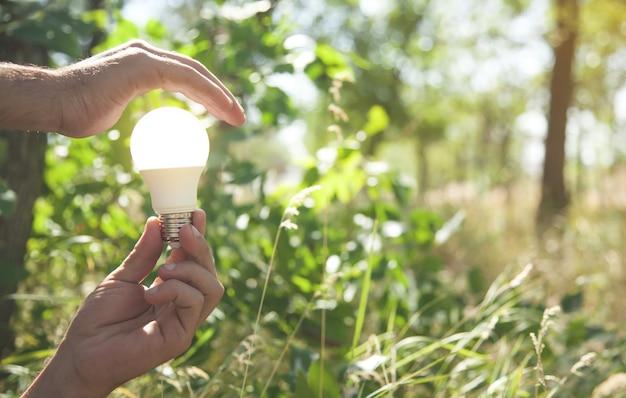 Les mains protègent l'ampoule dans la nature. énergie verte