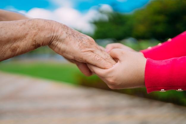 Les mains secourables pour les soins à domicile pour personnes âgées dans un parc en plein air.