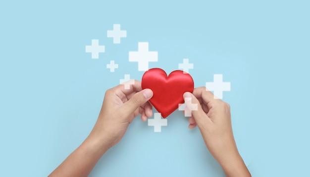 Mains tenant un coeur rouge. concepts de don de santé cardiaque