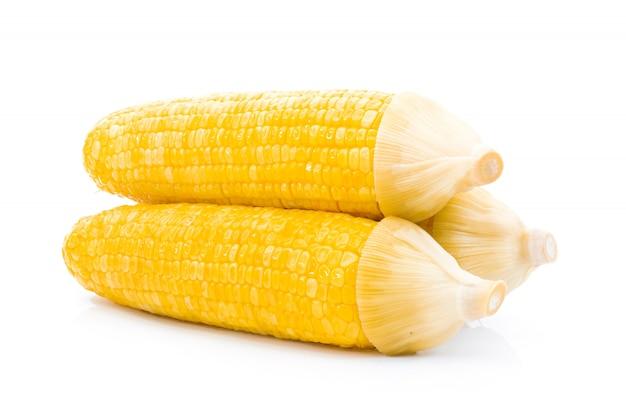 Maïs bouilli sur fond blanc