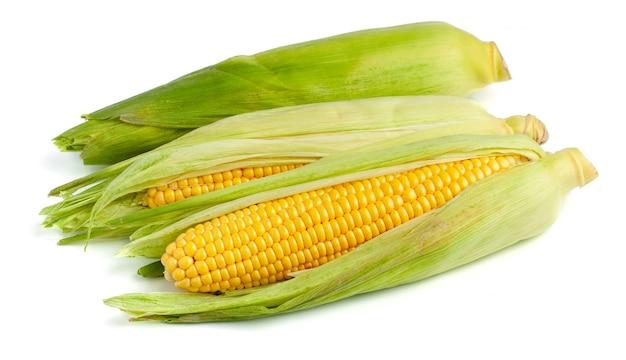 Maïs dans les feuilles isolés sur fond blanc.