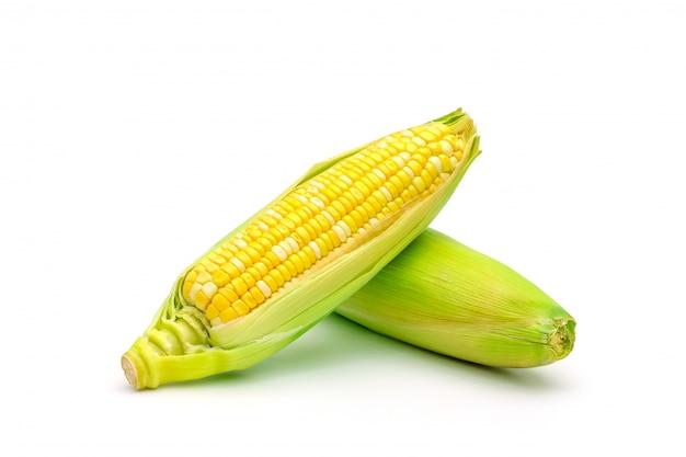 Maïs doux bicolore isolé sur blanc