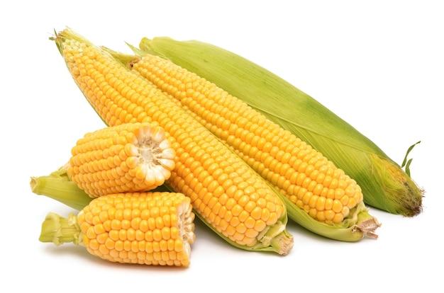 Maïs sur fond blanc