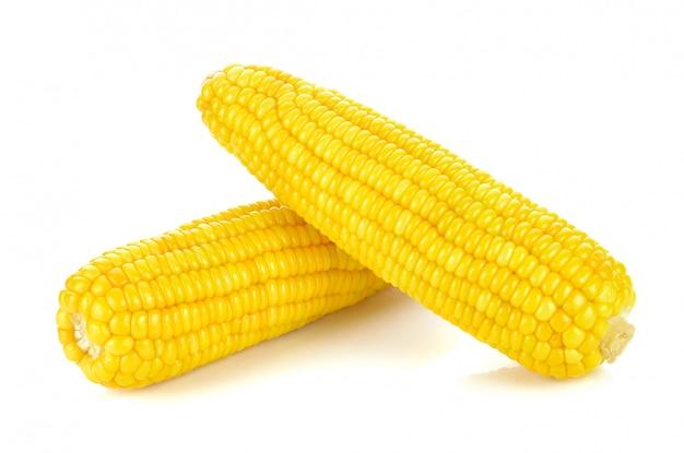 Maïs à grains entiers doux sur fond blanc