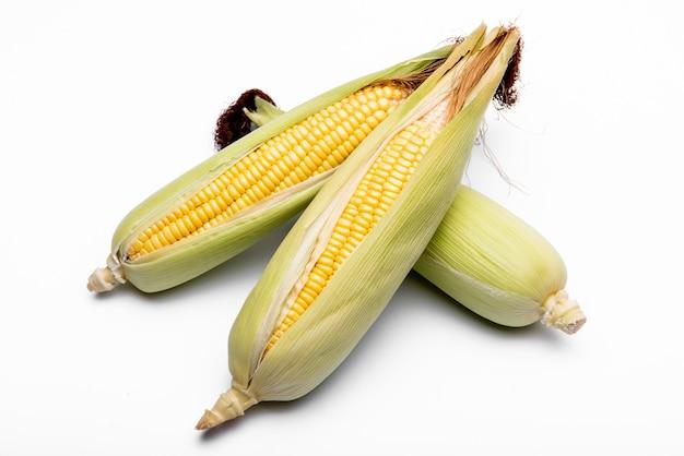 Maïs isolé sur fond blanc.