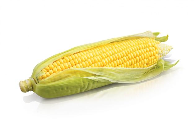 Maïs jaune frais sur blanc