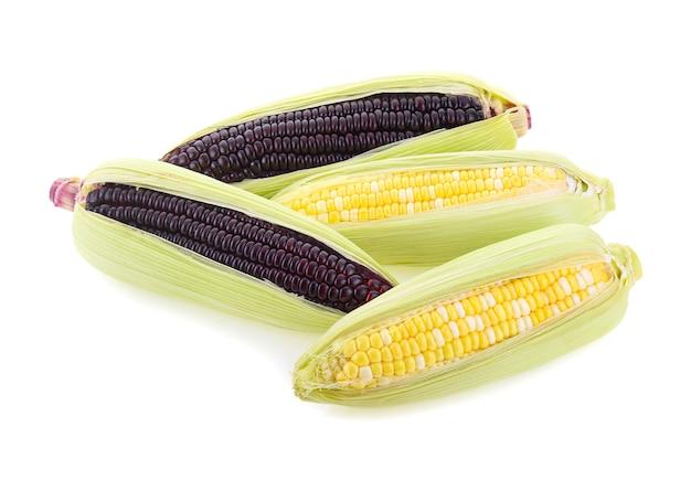 Maïs violet frais et maïs sucré isolé sur fond blanc