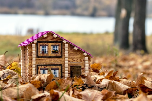Maison au bord de la rivière. logement écologique. maison de jouet