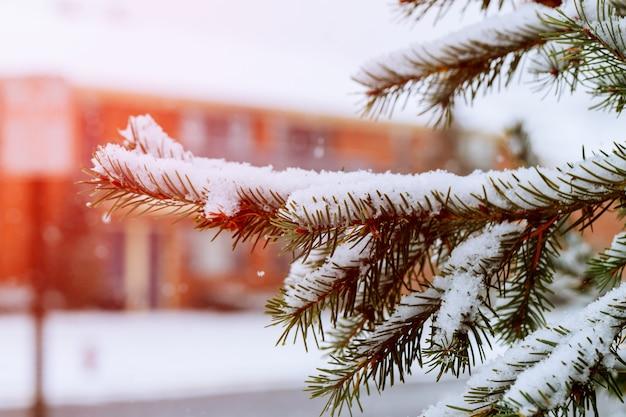 Maison de banlieue avec la neige au sol et plus en baisse