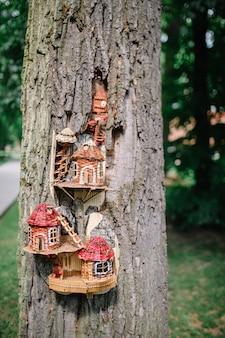 Maison en bois conçue dans un ancien arbre