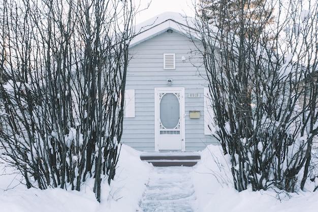 Maison avec des buissons en hiver