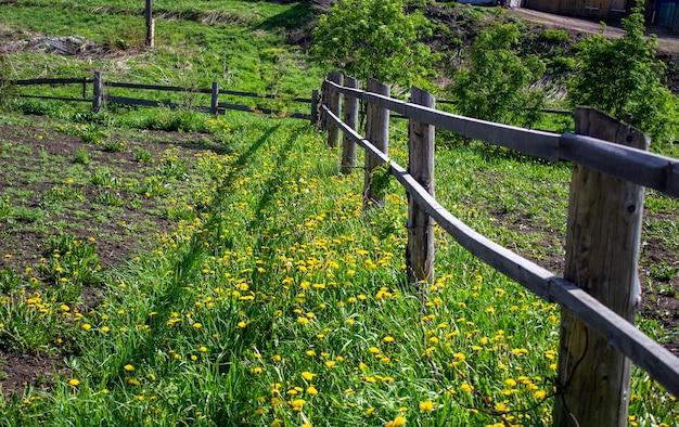 Maison de campagne à la campagne. clôture dans le jardin de longs bâtons. parties de la région.
