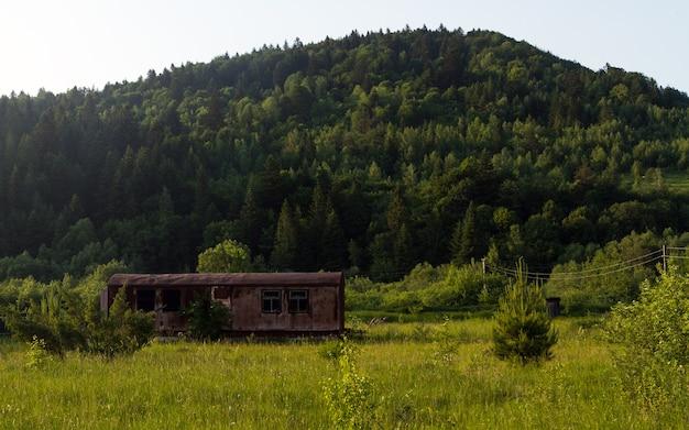Maison de conteneur dans la forêt