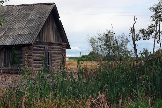 Maison dans un champ avec des roseaux