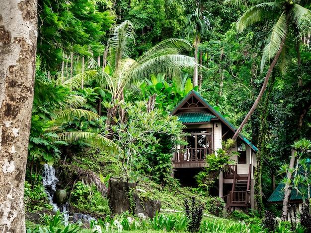 Maison dans la forêt tropicale en thaïlande