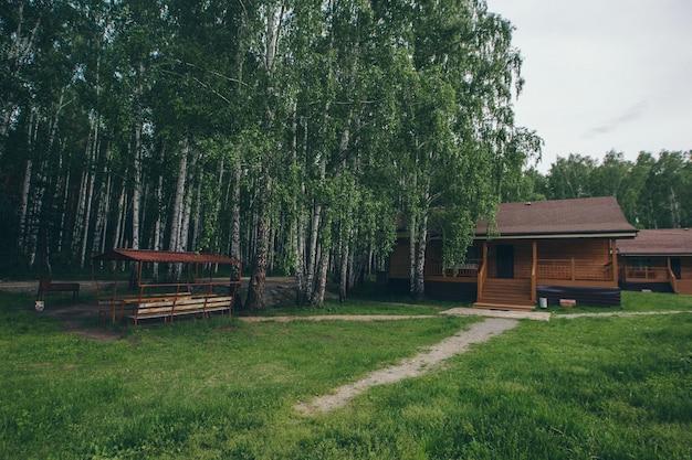 Maison d'été en bois dans un bosquet de bouleaux. camping dans les bois. construction écologique